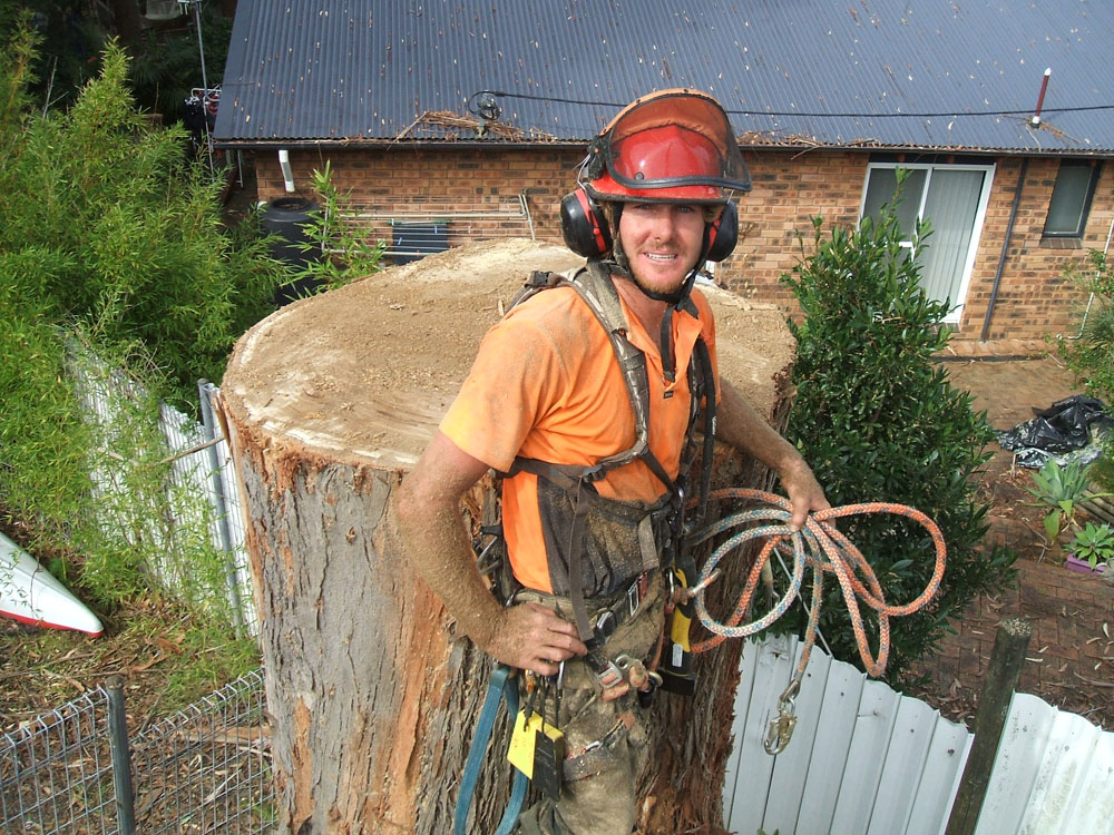 Tim Griffiths happy after a large tree removal.